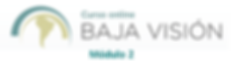Logo BV 2 actual.png