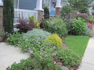cottage front garden.JPG