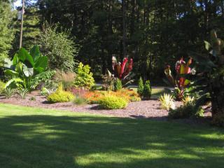 frontyard (1).JPG