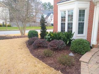 front plantings N Raleigh.jpg