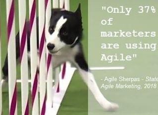 Agility in Marketing