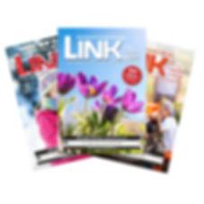 wd-link-fan.jpg