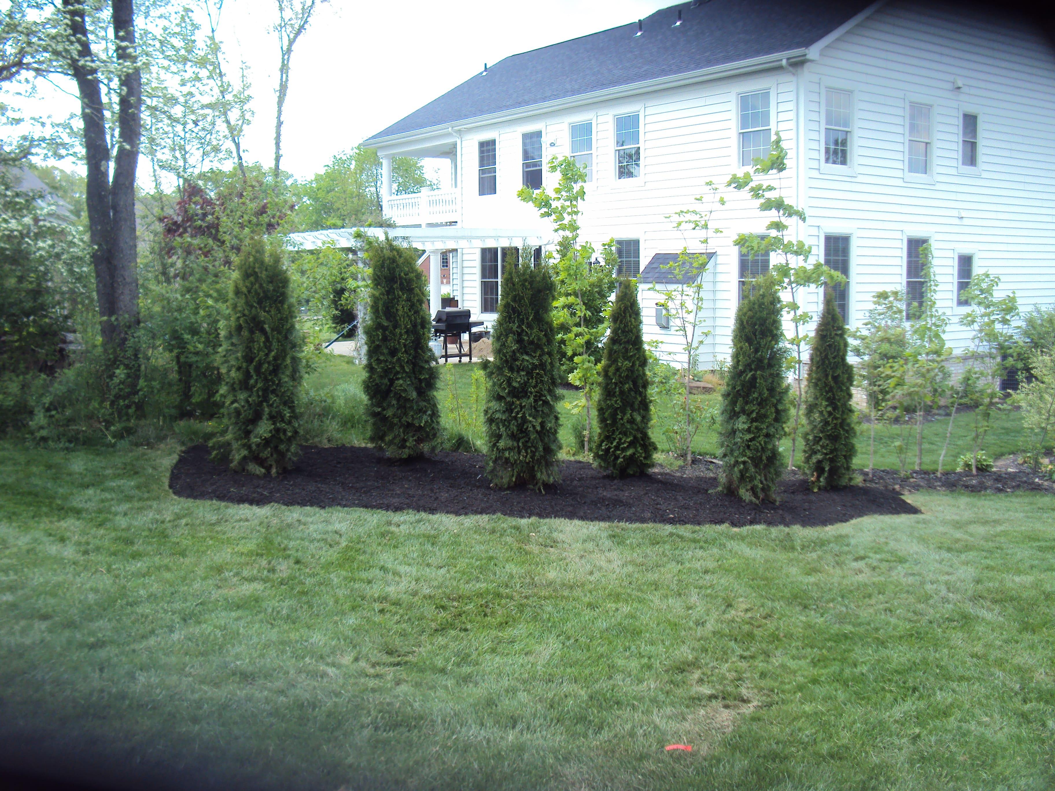 Lawn maintenance Saxonburg Butler