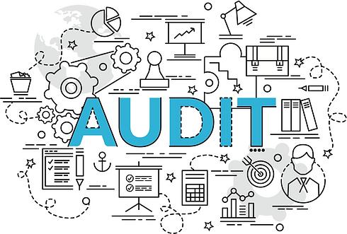 NBHA_Audit Header.png