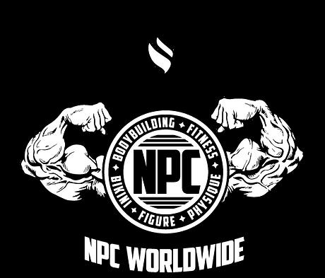NPC2.png