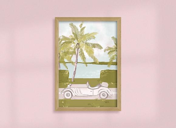 Cruising Through Palm Beach