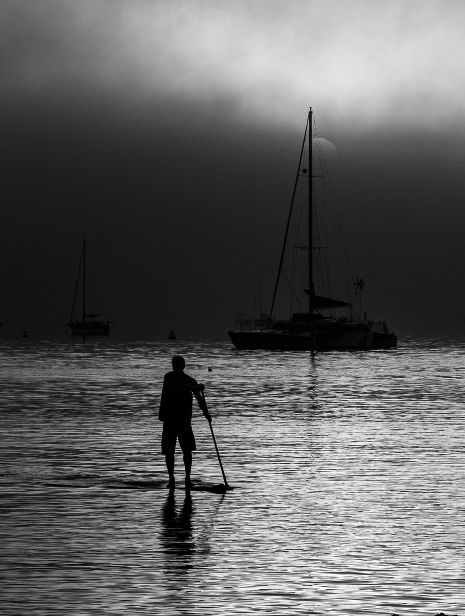 Paddleboarder in Pillar Point Harbor (Ha