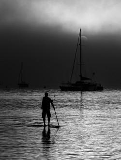 Paddleboarder in Pillar Point Harbor (Ha