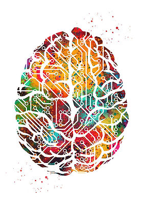 circuit-brain.jpg