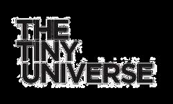 TTU_logo-ORG_120x@2x