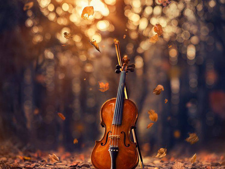 Времена года. Вивальди, Чайковский, Пьяццолла.