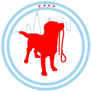 chicago dog walkers