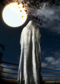 the watcher of the moon ...