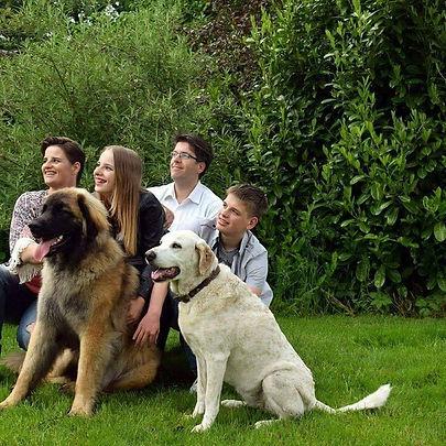 ons gezin. een heerlijke roedelthuis. Een heerlijke plek voor alle loge honden.