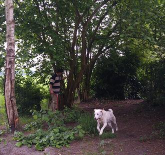 Daisy heeft bij hondenresort Darling, als ze moe is krijgt ze van Darlings Dog Store wat lekkers.