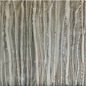 Silver Aspen Trees