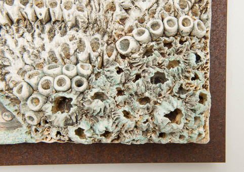 Fish Panel Detail