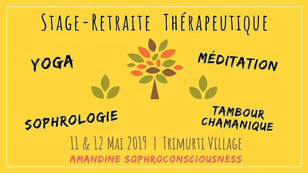 Stage-Retraite_SY_Thérapeutique_full.png