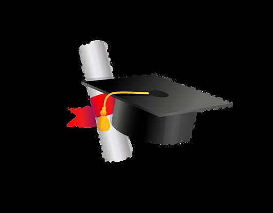 portal de cursos 2.png