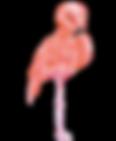 odbird.png