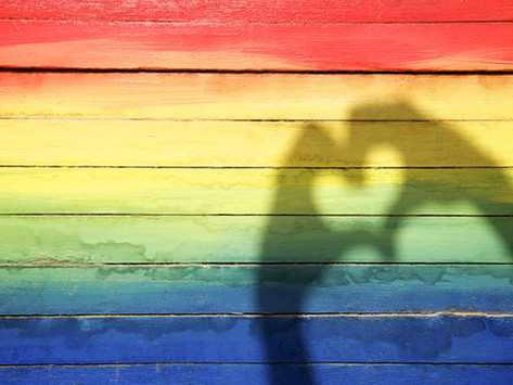 NC Court of Appeals Extends Domestic Violence Protections to Same Sex Couples