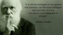 Deal Flow Darwinism - Will Investors Survive?