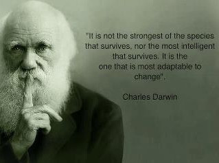 Deal Flow Darwinism - Will Investors Survive?