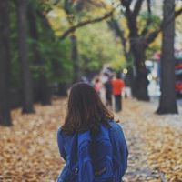 בעיות חברתיות בבית הספר | על חברים ולימודים