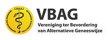 logo_1200-vbag.jpg