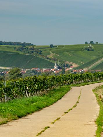 Escherndorf.jpg