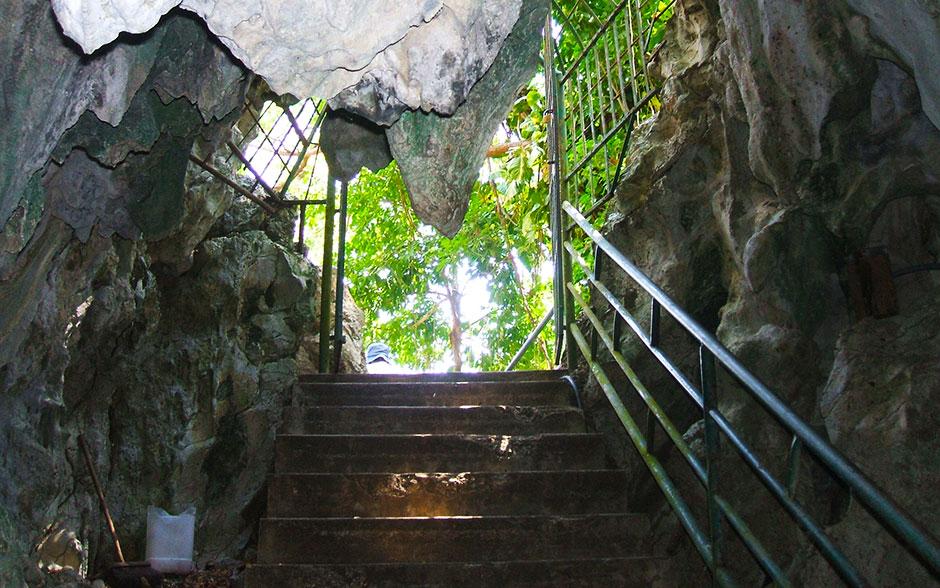 Roaring River Westmoreland Jamaica