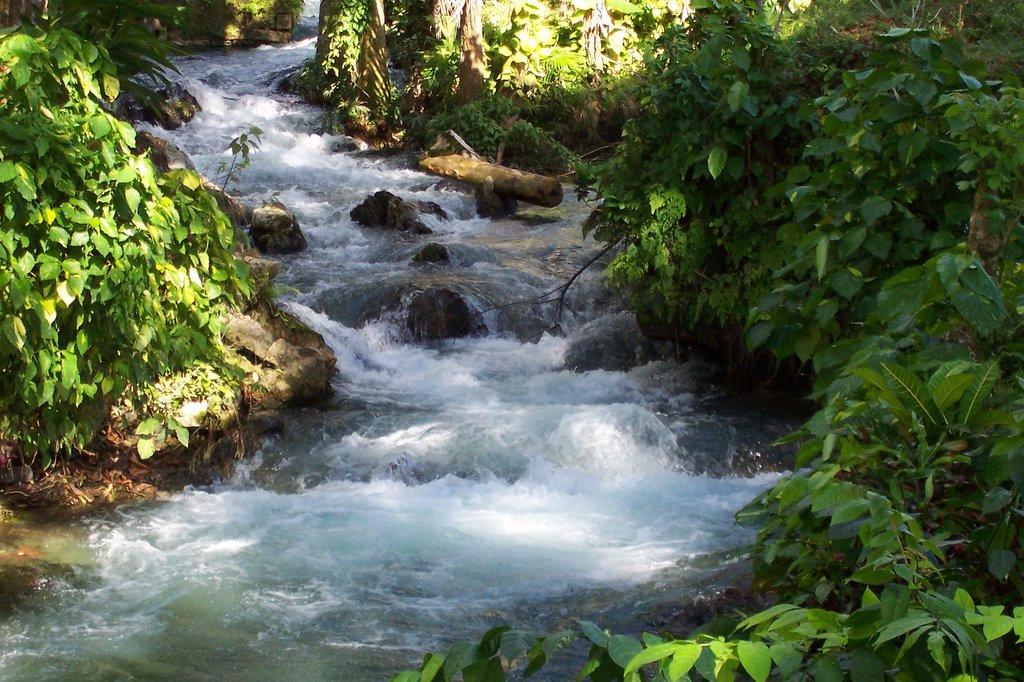 Roaring River Westmoreland