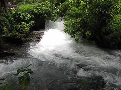 Roaring-River