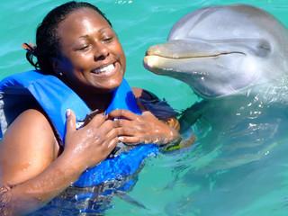 Dolphin Cove Tour $80usd