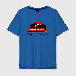 Мужская футболка хлопок Oversize