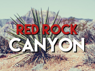 The Nevada Series: Red Rock Canyon