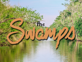 The New Orleans Series: The Swamps