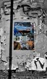 Fragmented World