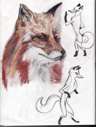 Sketching for the Fox