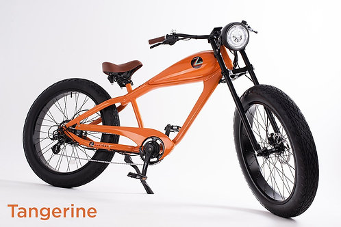 Ez Riderz Z Electric Bike