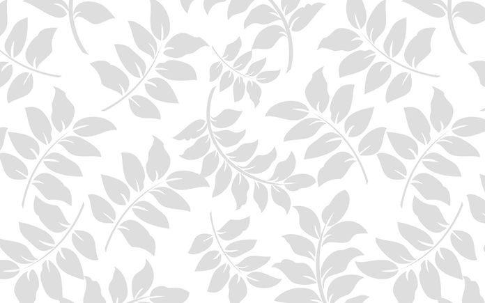 white-background-vines.jpg