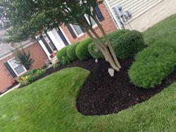 Beautiful Lawn Designs