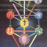 Tree of Life 7.jpg