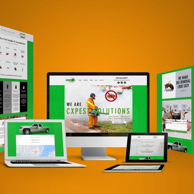 Website and Logo Design for CX Pest Solutions