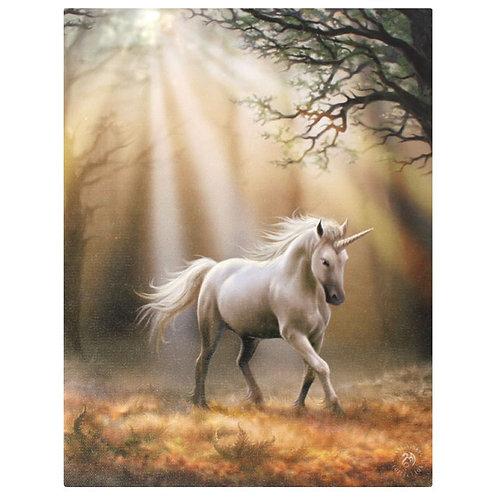Glimpse of the Unicorn (Anne Stokes) Canvas Print 19x25cm