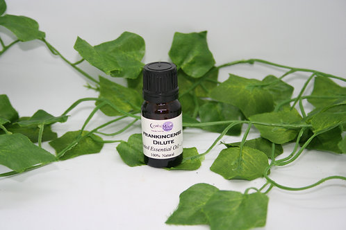 Frankincense (Dilute) Essential Oil - 10ml