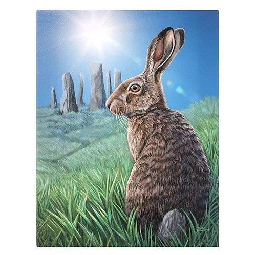 Soltice (Lisa Parker) Canvas Print - 19x25cm