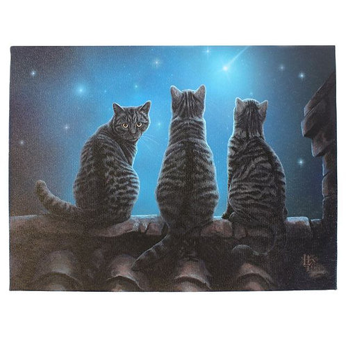 Wish Upon a Star (Lisa Parker) Canvas Print - 19x25cm