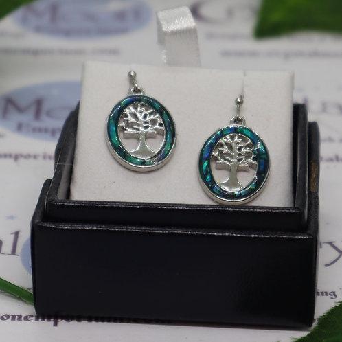 Paua Shell Encircled Tree of Life Oval Earrings
