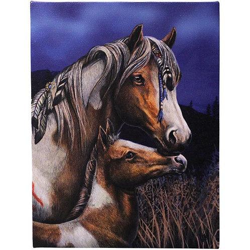 Apache (Lisa Parker) Canvas Print - 19x25 cm